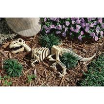 Raptor Dinosaur Fossil Skull Skeleton Bones Statue Halloween Props Gothi... - $1.072,79 MXN