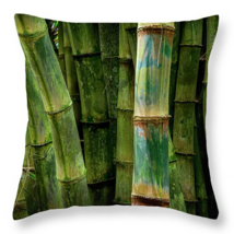 Bamboo Details up close, Throw Pillow, fine art, home decor, accent pillow - $41.99+
