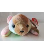 "SAMMY Tie Dyed Rainbow BEAR 8"" Multi Color 6/23/1998 RARE RETIRED TY BEA... - $10.35"