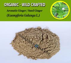 POWDER Aromatic Ginger Sand Cutcherry Resurrection Lily Kaempferia Galanga Fresh - $7.99+
