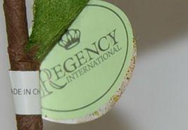 Regency int MTX45622 Red Green Poinsetta Curly Spray Decorative Balls image 7