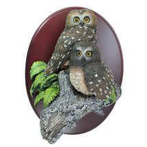 The Gray Rock Collection Pair of Northern saw-whet Owl Resin 3D Wall Fig... - $59.99