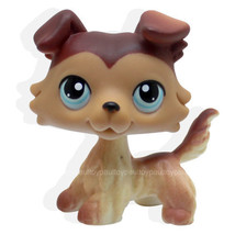 Littlest Pet Brown Collie Dog Puppy Blue Eyes Figure Toy Animal lps 58 - $23.99