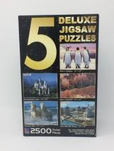 5 Deluxe Jigsaw Puzzle Sure-Lox Penguins Castle Canyon Horses River Walk - $14.95