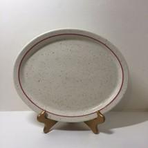 "Oval Platter Steak Plate Homer Laughlin Lead Free Speckled 12.5"" Pink Band - $14.50"