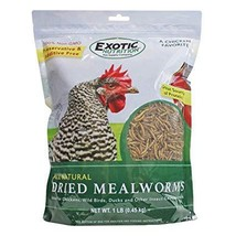 Exotic Nutrition Dried Mealworms (1 lb. Bag) - $15.95