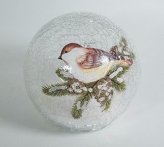 "5.5"" LED Crackle Glass Globe with Bird on Branch Tabletop Holiday Decor - $27.67"
