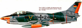 1/144 scale Resin Kit  Fiat G.91 Gina German Air Force - $12.00