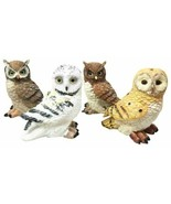 Colorful Nocturnal Owls Of The World Miniature Figurine Set of 4 Owl The... - $21.99