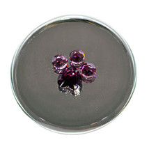 Pawprint Mirror Magnet image 3