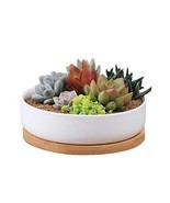 White Planter Pot Flower Plant Holder Ceramic Decorative Bamboo Tray Con... - €23,84 EUR