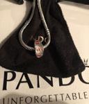 AUTHENTIC PANDORA Wild Hearts Charm, 791649