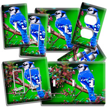 Blue Jay North American Bird On A Tree Light Switch Outlet Wall Plate Room Decor - $8.99+