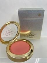 BNIB MAC Mariah Carey Blush Highlighter Eyeshadow Brush YOU CHOOSE w/receipt - $26.99+