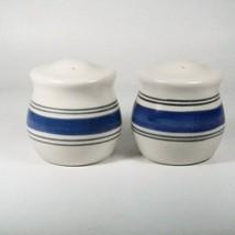 Pfaltzgraff Rio Salt and Pepper Shaker Set Ceramic Blue Grey Striped Pot... - $23.33