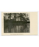 Mirror Lake UDB Postcard Brown's Mills in the Pines New Jersey - $17.82