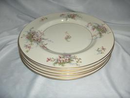 "5 Vintage 10.75"" Dinner Plates Theodore Haviland China Apple Blossom New York - $74.25"