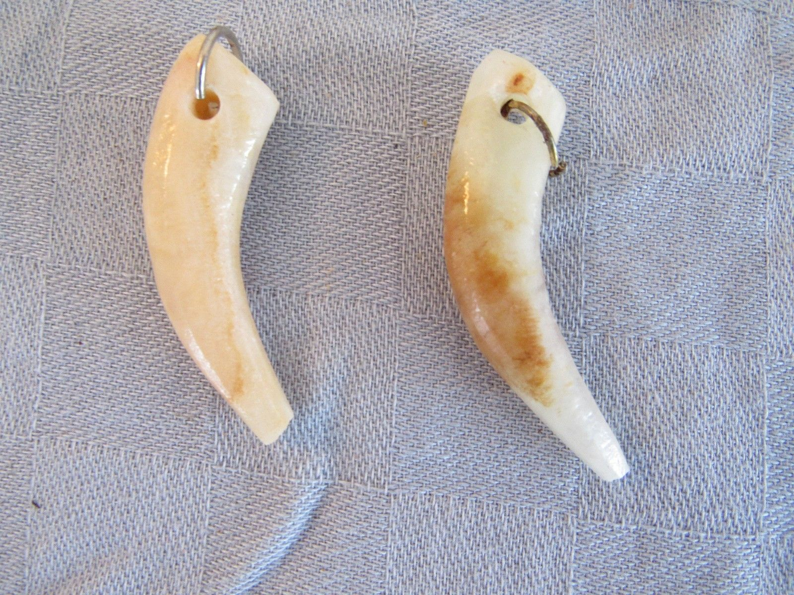 "Natural Stone 2"" Tooth Claw Horn Necklace Pieces Lot of 13"