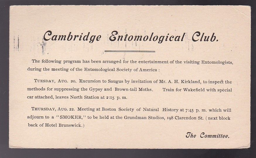 CAMBRIDGE ENTOMOLOGICAL CLUB STONEHAM MASS AUGUST 13 1907 ON 1C POSTAL CARD