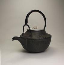 Tetsubin - Gofuku - Shochikubai & Tsurukame - Japanese kyusu teapot kett... - $802.38