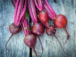 500 Fresh Seeds - Dark Red Detroit Beet Beets - 58 days - $12.08