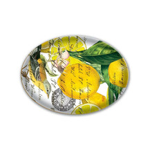 Michel Design Works Lemon Basil Glass Soap Dish - $20.50