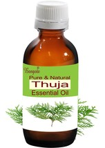 Thuja Oil- Pure & Natural Essential Oil- 15 ml Thuja occidentalis by Ban... - $11.97