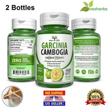 2X GARCINIA CAMBOGIA 95%HCA Capsules PURE Fat Burn Slim Weight Loss Natu... - $21.74