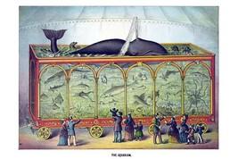 The Aquarium by Gibson & Co. - Art Print - $19.99+