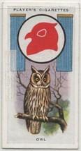 Long Eared Owl Asio otus 1930s  Ad Trade Card - $5.39