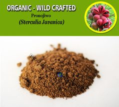 POWDER Pronojiwo Seeds Sterculia Javanica Organic WildCrafted Fresh Natu... - $8.10+