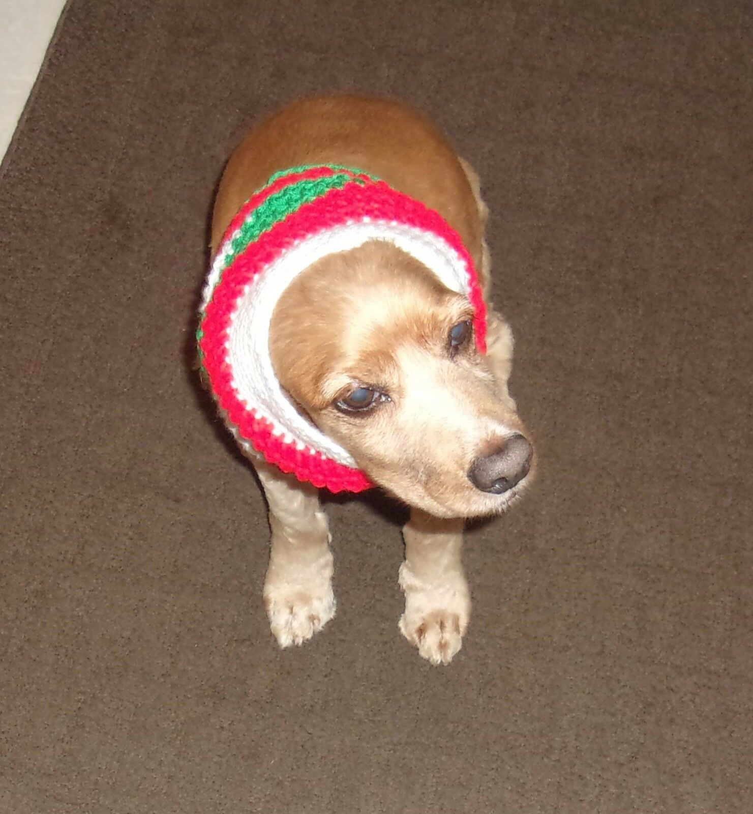 Brand New Hand Crocheted Red Green White Dog Snood Neck Warmer 4 Rescue Charity