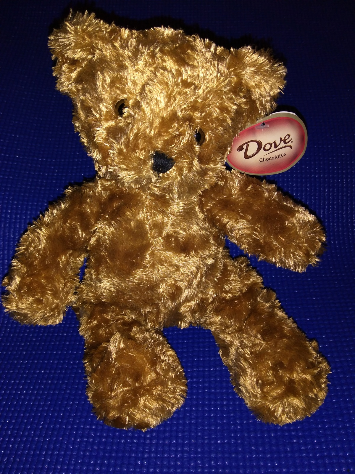 NWT Dove chocolates 10 inch plush Teddy bear