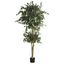 6-Ft. Double Ball Ficus Silk Tree 5268 - €131,02 EUR