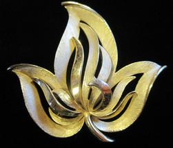 Crown Trifari Signed Brooch Pin Brushed Gold Tone Maple Leaf Designer Vi... - $49.49