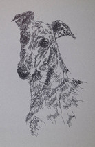 GREYHOUND SIGNED DOG ART PRINT Kline adds your dogs name free - Brindle ... - $49.45