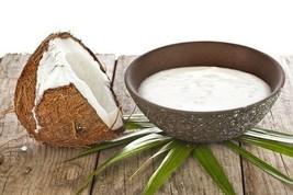 Coconut Yogurt Starter, Vegan, Gluten Dairy Free. EVERLASTING! Buy Only ... - $11.88