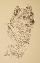 Japanese Shiba Inu Dog Art Print #34 Stephen Kline adds your dogs name free GIFT - $49.95