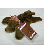 Hawaiian Collectibles 'Ilio the Puppy Plush Beanbag Animal - $12.83