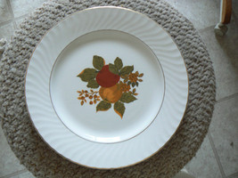 Wedgwood dinner plate (English Harvest) 3  available - $3.27