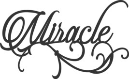 Ornamental Miracle Metal Wall Art Accent - $16.82