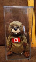 Ty Beanie Baby ~ TIMBERS the Beaver ~ Canadian Exclusive in PVC box - $29.99