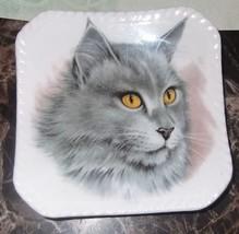 "Vintage Cat Plate Bone China England 4"" Square Trinket Dish  - $14.95"