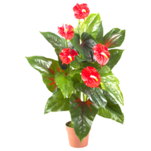3' Anthurium Silk Plant (Real Touch) - $61.23