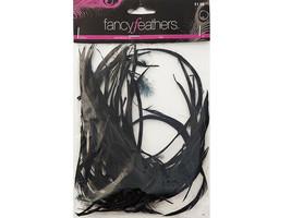 Hobby Lobby Fancy Feathers Goose Stiff Biots #561621
