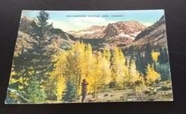 Montezuma Mountain Aspen Colorado 1944 Linen Postcard Metrocraft Denver ... - $8.42