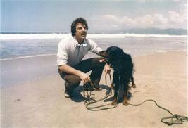 Tom Selleck w/ Dog on the Beach Candid 8x10 Photo 8X-457 #2 - $14.84