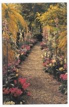 Kennett Square PA Longwood Gardens Flower Walk Acacia Primulas Vintage Postcard - $4.99