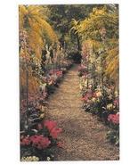 Kennett Square PA Longwood Gardens Flower Walk Acacia Primulas Vintage P... - $4.99