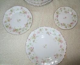 18 pc Maple Leaf Hutschenreuther Bavaria dinner salad dessert plates - Vtg China - $200.00